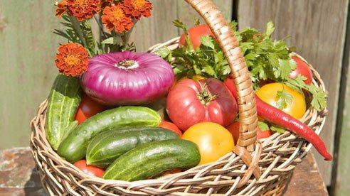 basket_of_produce-a56e8f4e7b6022695618ffd65d8829ab