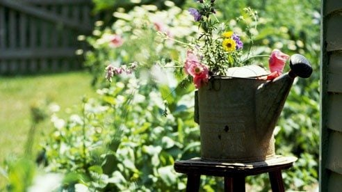 watering_can_1-621d60f4086736d871235cf324881a4b
