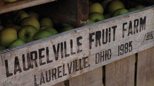 laurelville_farm_1-c9e90a3bb6feca300bee420c4091b4a3