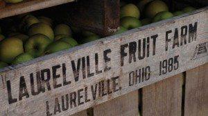 laurelville_farm_1-ed4a83883a893a04b800306b52bcbba3