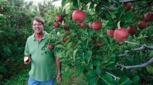 Robert Bowers taste-tests a Stayman Winesap apple straight from the trees in his orchard.