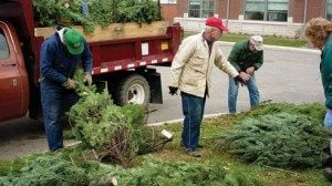 As part of Operation Evergreen, these trees were baled by volunteers and eventually found a home among American troops stationed overseas.