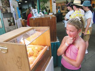 Visitors can see chicks hatch as they learn about egg production in Ohio. File Photo