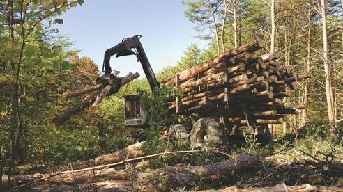 Ohio's forest cover has tripled over the last century and the state's forest products industry contributes $15 billion to the economy.