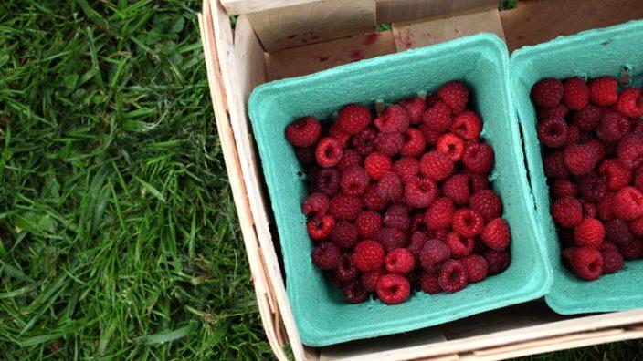Rosby-Companies-raspberries