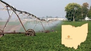 Low pressure irrigation nozzles irrigate the bean field and protect from erosion.