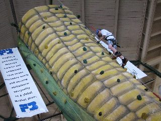 Climb the giant corn wall at the Ohio State Fair.