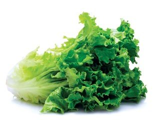 Several changes made to National Leafy Greens Agreement after farmers speak up