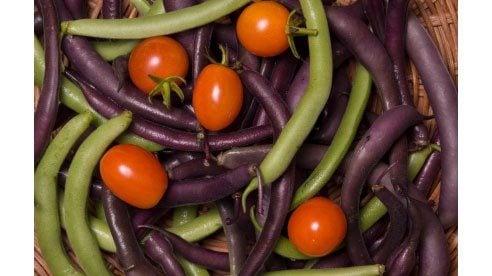 green_beans_tomatoes-894104a18c04a66337ffbdbeec59aa62