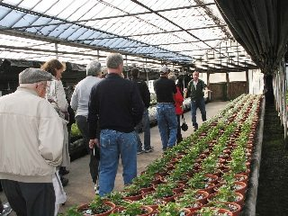 Tom Mechamer takes guests through his greenhouse.