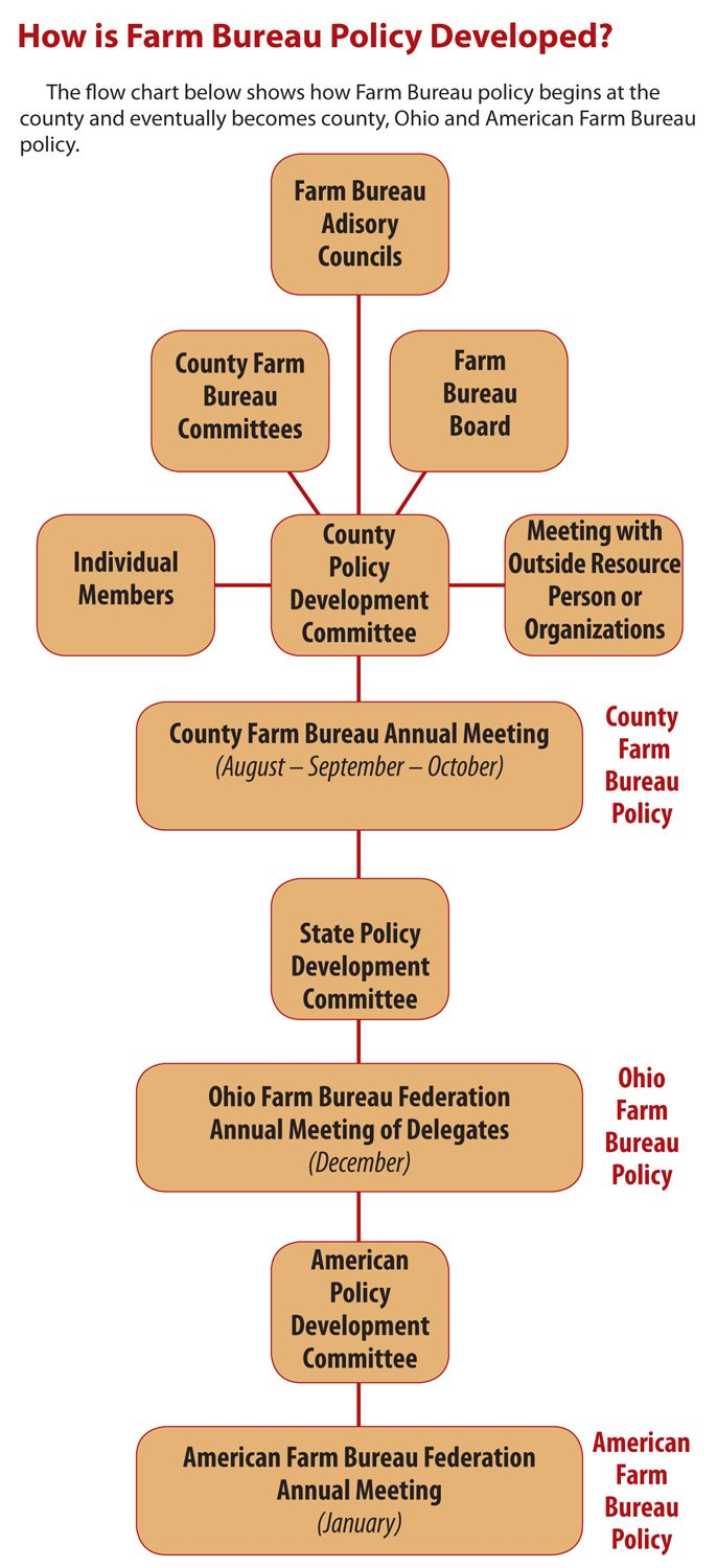 Flow chart of the policy development process