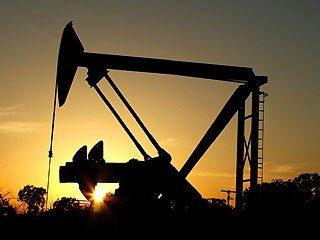 oil31