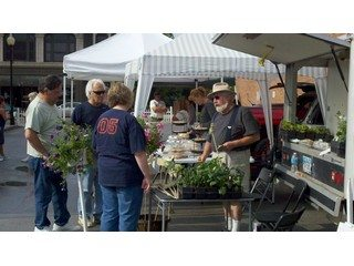 Shoppers buying fresh, local food at Clinton County Farmers' Market