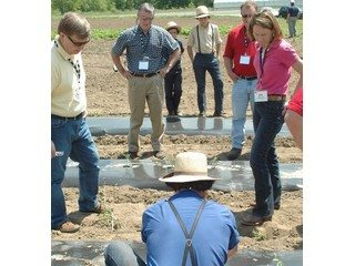 Conference attendees visiting Owl Creek Produce Auction