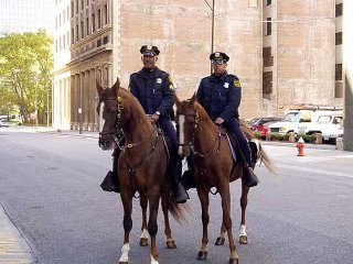 Mounted police at work