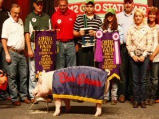 Lea Kimley with her Grand Champion Barrow