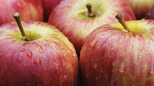 apples_fresh_2-cac023642d63aaf65be16c8a588f98e5