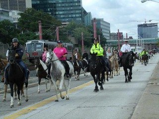 Horse March Sept 2012