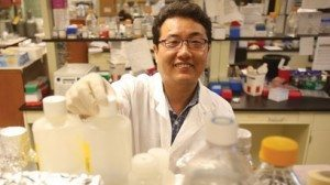 Kichoon Lee has applied his experience doing medical research as he studies livestock and meat production.
