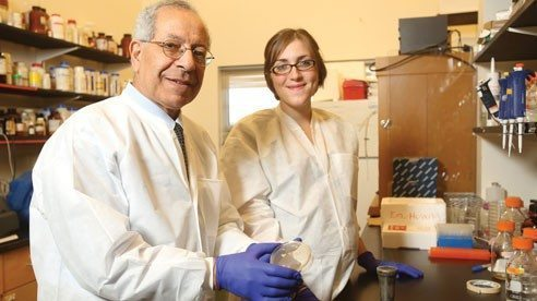 Ahmed Yousef and Jen Perry are researching ways to improve the safety and quality of food.