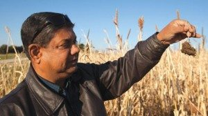 Farmer David Brandt has worked with Ohio State University soil scientist Rafiq Islam in his effort to make farming more sustainable.