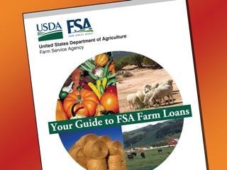 FSA_Guide