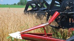 Similar to a harvest of wheat, a combine collects spelt in midsummer on Matt Peart's Wayne County farm.