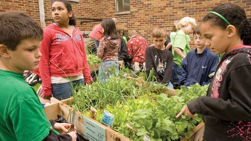 The Shelby County Farm Bureau helped students at Central Elementary School in Sidney learn about the origins of what they eat through a school gardening project.