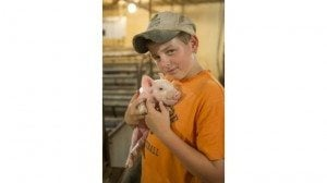 Ronnie Schumm has inherited his father's affection for pigs.