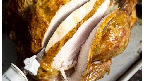 Turkey_slices-f916ed7ce57345057551934ba0fed617