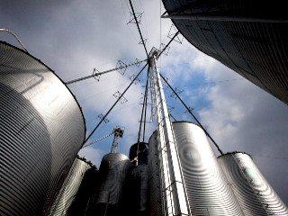 2_Beef_silos
