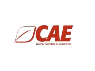 CAE_320x2401