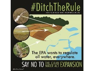 ditchtherule