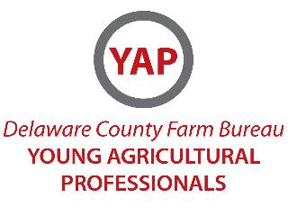 Delaware_YAP_logo1