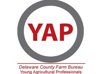 Dela_YAP_logo