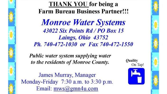 Monro Water Website ad 2016
