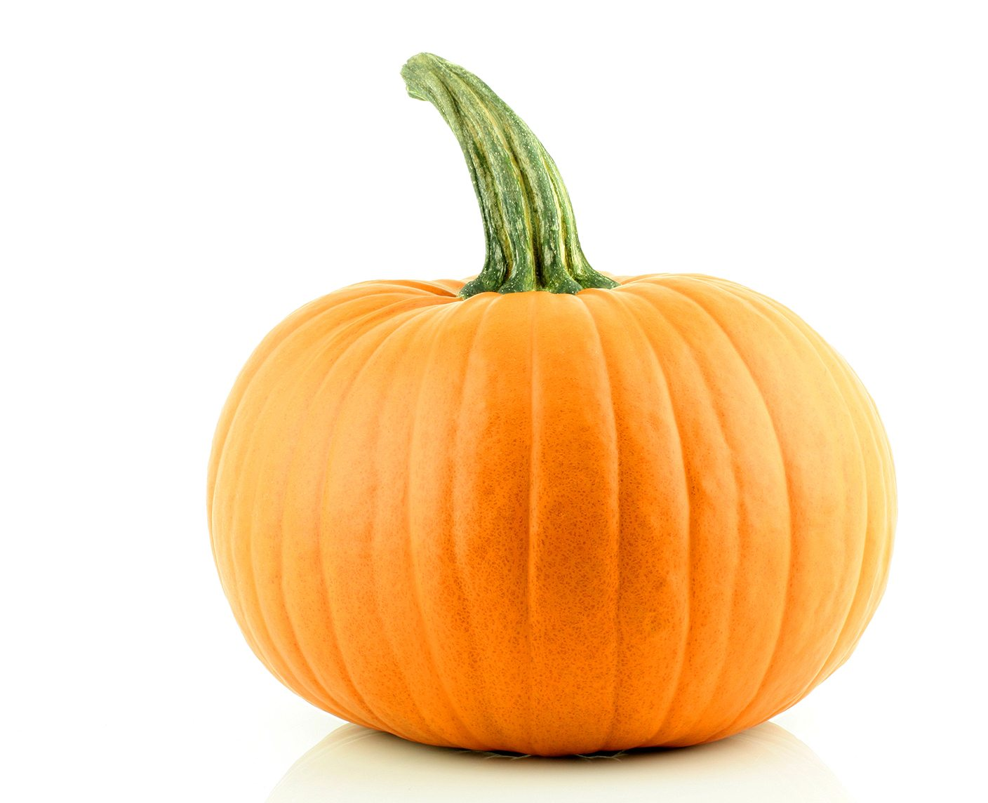 A nice orange Pumpkin on a white background.