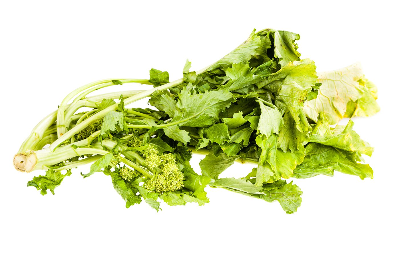 a heap of turnip greens isolated over a white background
