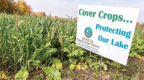 A Cover Crops and Grazing Management project leverages federal funds to help farmers install conservation practices and plant cover crops to improve overall soil health, reduce erosion and prevent nutrients.
