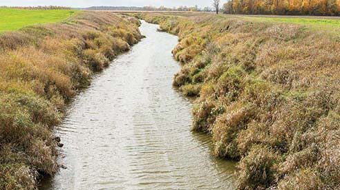 Community partners are working to improve water quality through education that will help farmers find profitable ways to lessen the use of fertilizer and prevent it from entering waterways.