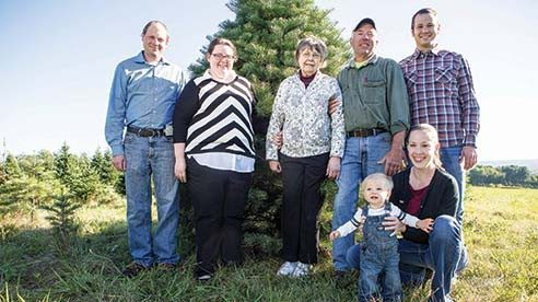 Twinsberry Tree Farm's 155 acres have been in the Berry family since the 1930s but Christmas trees were first planted in the mid 1970s, with the trees covering 40 well-kept acres throughout the farm.