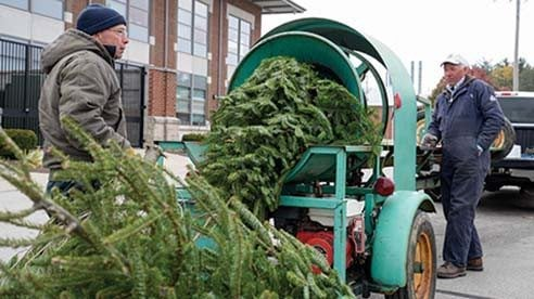 Operation Evergreen loading trees at the Ohio Department of Agriculture. Photo by Galen Harris.