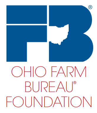 foundation logo low res