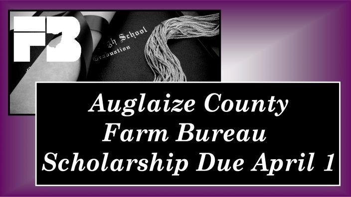 Auglaize Scholarship