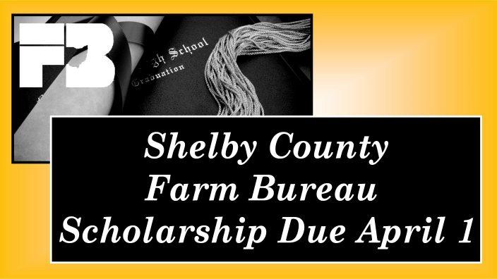 Shelby Scholarship