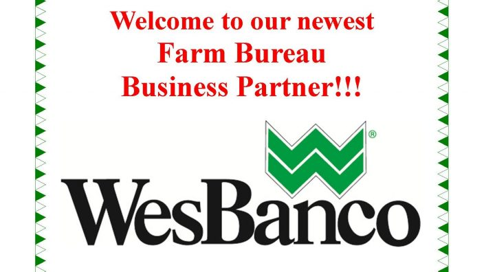 WesBanco Business Partner website ad BC