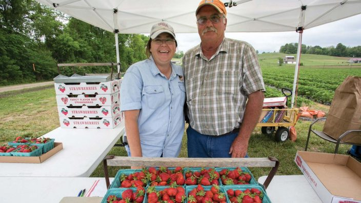 Christie and Al Welch. Welch's Strawberry Farm  319 E Hydell Rd, Chillicothe, OH 45601 Phone:(740) 703-4826.(Photos by Jodi Miller)