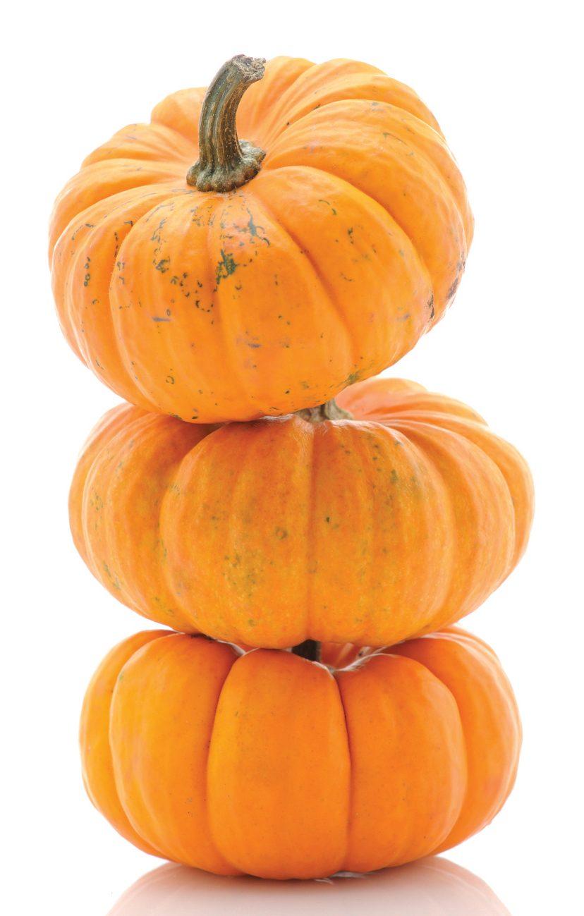 PumpkinStack