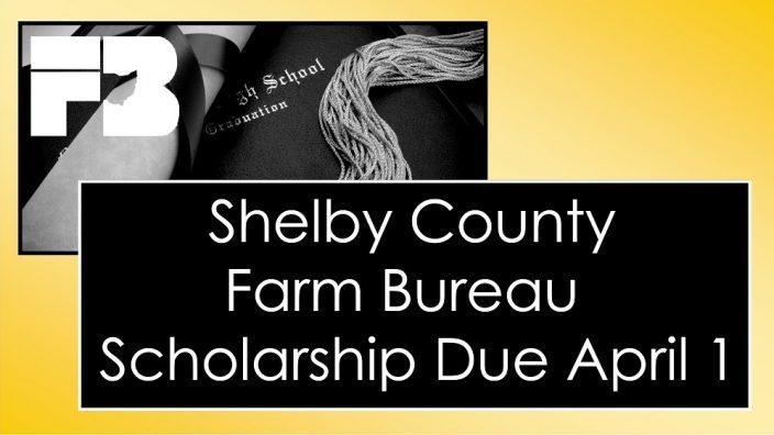 shelby-scholarship