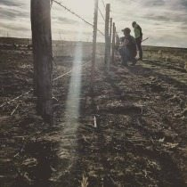kansas-fence-post